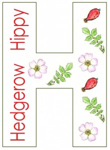 watercolour H - flowers - lighter lines - lighter red